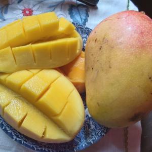 マダガスカル軟禁生活日記 その201 ちょっといいマンゴーとピーマンの肉詰め