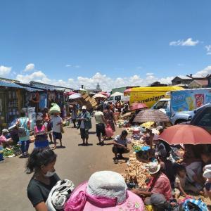 マダガスカル軟禁生活日記 その283 スーパーフード・モリンガの種とニナ特製カルボナーラ