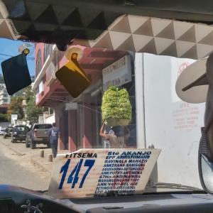 マダガスカル軟禁生活日記 その288 噂のピザ屋さんと残り物でカレー