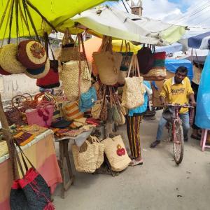 マダガスカル軟禁生活日記 その347 お土産を買いに市場へとニナバーグ