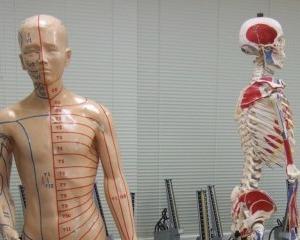 ちょっとグロいけど激烈に「面白くて眠れなくなる解剖学」[2019-36]【レビュー#237】