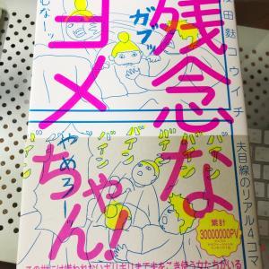 ひとりで頷いてしまった書籍「残念なヨメちゃん!」