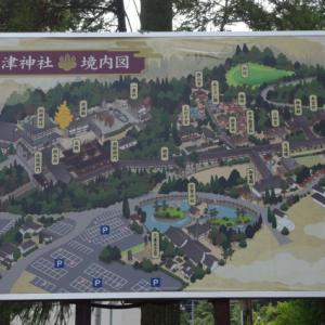 No 181  吉備津神社の紫陽花
