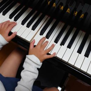 両手でかっこうを弾いたよ