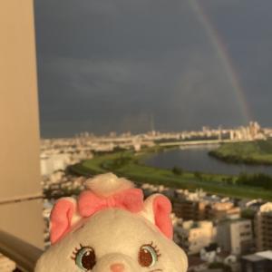 雷雨の後の虹♪
