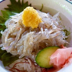 江ノ島の魚見亭の生しらす丼♪