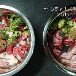 10/26 今日の犬ごはん