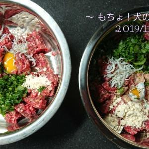 11/1 今日の犬ごはん
