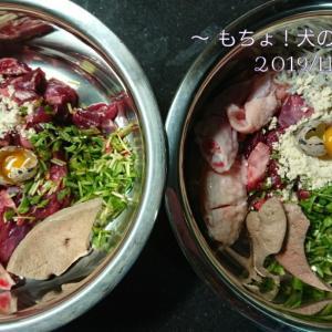 11/7 今日の犬ごはん
