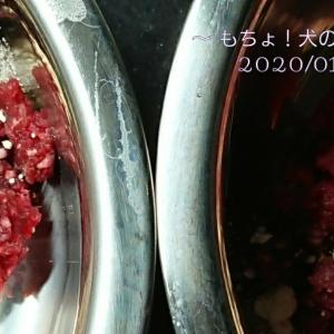 1/24 今日の犬ごはん