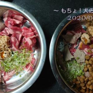 9/21~23 今日の犬ご飯