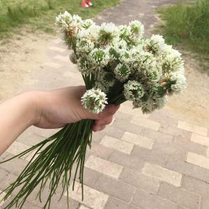 花かんむり♪