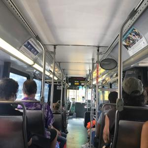 バス旅でオススメグルメ三昧