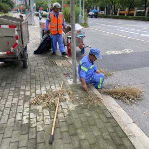 上海の公共清掃の進化
