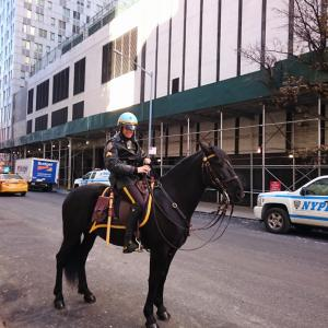 New York☆mounted police☆Mercedes-Benz Manhattan