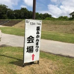 萩へドライブ~夏みかん祭り