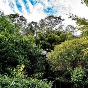香しい山門【円応寺】巨福呂坂まで漂う金木犀の香り
