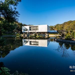 坂倉の美、再び。【鎌倉文華館 鶴岡ミュージアム】平家池の周りも整っていました