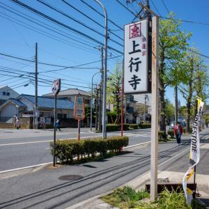 鎌倉点景【上行寺】六浦湊があったここも鎌倉