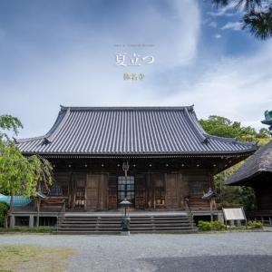 夏立つ【称名寺】称名寺市民の森を訪ねて!ここも鎌倉。
