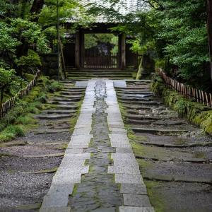 湿度たっぷり【寿福寺】何度来ても感動は変わらない