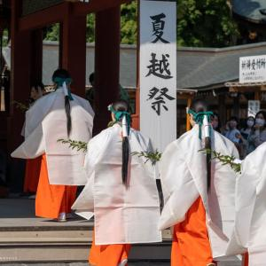 夏越祭 【鶴岡八幡宮】 令和二年、コロナ禍の雪洞祭