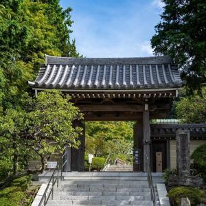 「鎌倉」の由縁【鎌足稲荷神社】秋桜には早かった。ならば未踏のあの場所へ!