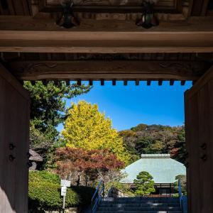 秋めく【浄妙寺】緑の少し残るグラデーションも美しい