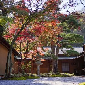 錦秋鎌倉【一条恵観山荘】京の香り漂う雅な庭園山荘