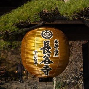 黄金色の提灯【長谷寺】 Since721 、3桁の重み。