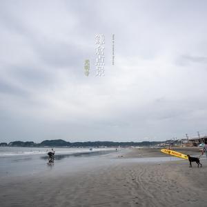 鎌倉点景【光明寺】観蓮会は今週末の7/27.28