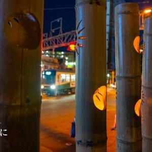 夏の夜に【龍口寺】竹灯籠が彩る幻想的な夏の夜