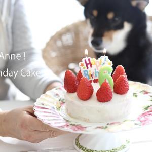 「オモエモン」より、愛犬あんへ手作りのバースデーケーキ。