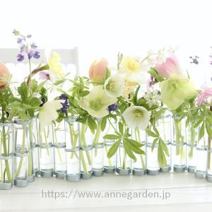 ツェツェの4月の花器に似合う花