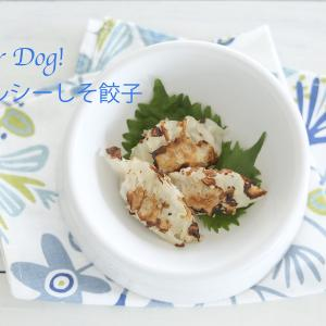 For Dog ! 夏向き手作りしそ餃子!
