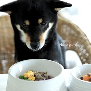 小豆ってすごい!甘くない茹で小豆を愛犬のご飯に応用。