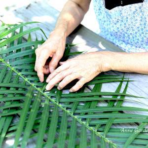 アレカヤシの葉を編んで愉しむ。