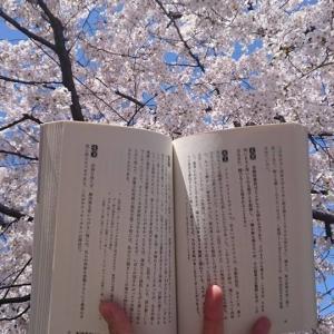 勉強が苦痛から喜びに変わる時