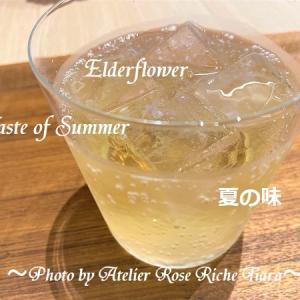 【夏のスッキリドリンク】「聖なる植物」&「世界最古のハーブ」の恵み♪