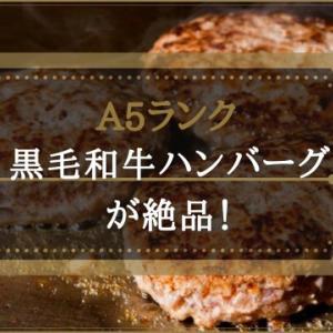 【楽天】A5ランク黒毛和牛ハンバーグが絶品でリピ買い!