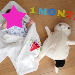 2歳11カ月&0歳1カ月、5月前半ハイライト!