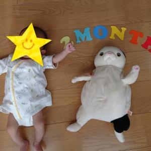 2歳11カ月&0歳2カ月、お兄ちゃんはオムツ卒業!?下の子は2カ月で寝返り!?