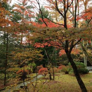 軽井沢の一番美しい紅葉スポットは?