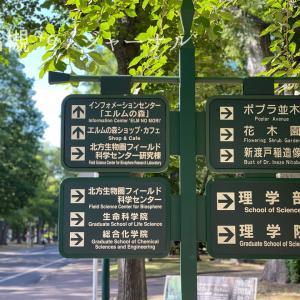 一人暮らしの息子に会いに札幌へ&おすすめの不動産やさん&北海道大学の景色。
