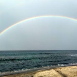 大きな大きな虹