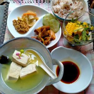 湯豆腐!!??