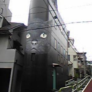 RIP 立花隆の猫ビル