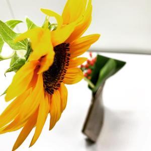 速攻で夏の花