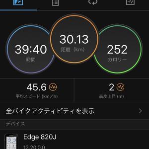 20200329桜とチューリップ