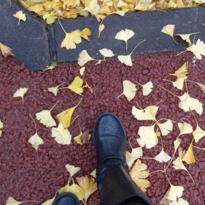 今日の出来事♪、栃木日光紅葉の旅⑤♪